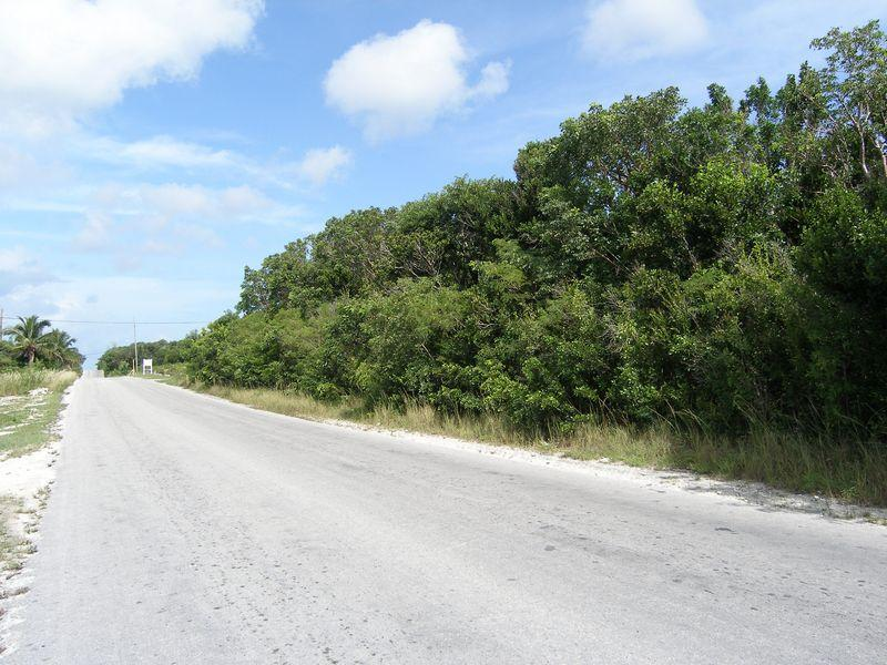 Acreage for Sale at Queens Highway Palmetto Point, Eleuthera . Bahamas