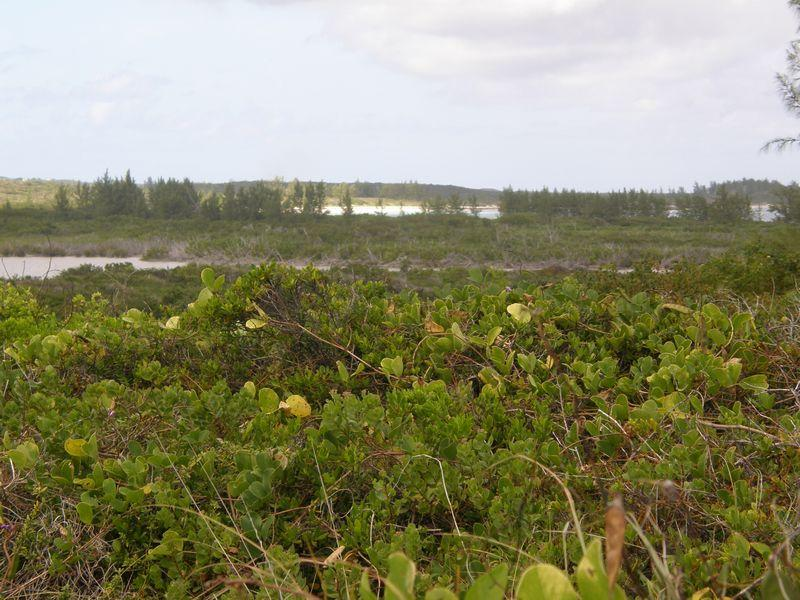 Additional photo for property listing at Airport Beach Excellent investment opportunity Governors Harbour, Eleuthera . Bahamas