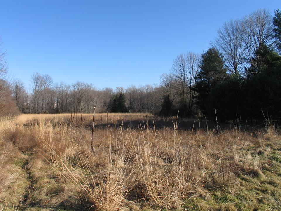 Autre pour l Vente à 241 Cherry Valley Road - 6 acres LAND Princeton, NJ Autres Pays