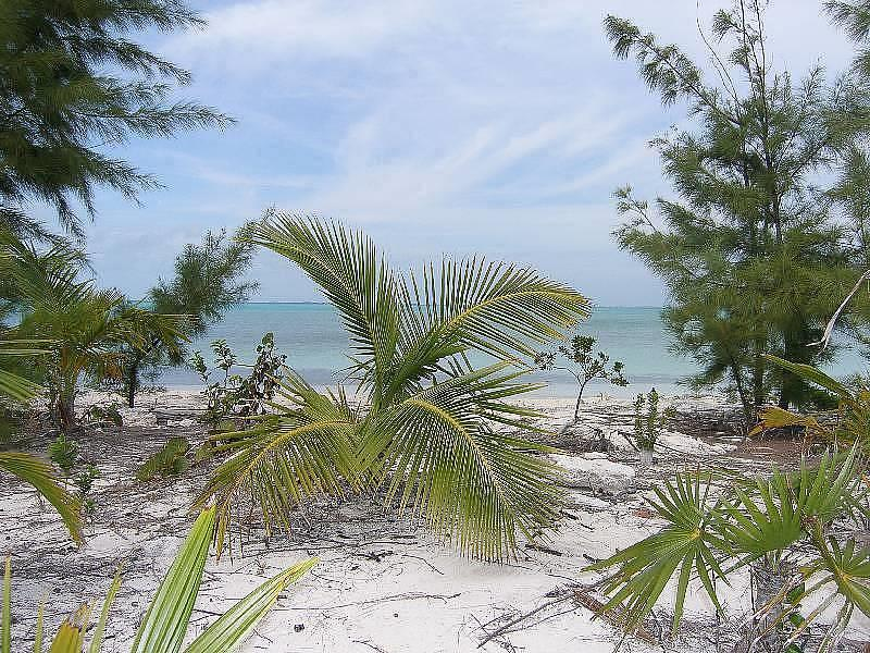 Additional photo for property listing at Once Acre Beachfront, Lubbers, Abaco, Bahamas Autres Abaco, Abaco Bahamas