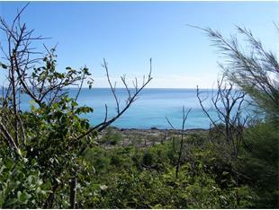 Additional photo for property listing at Lots 82 & 83, Block 39, Section D, Rainbow Bay, Eleuthera Other Eleuthera, Eleuthera Bahamas