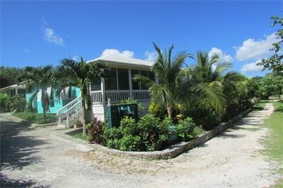 Additional photo for property listing at Fish Camp, Lubbers Quarters, Abaco Other Abaco, Abaco Bahamas
