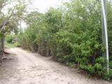 Other for Sale at Double L Lot, Man O War Cay, Abaco Other Abaco, Abaco Bahamas