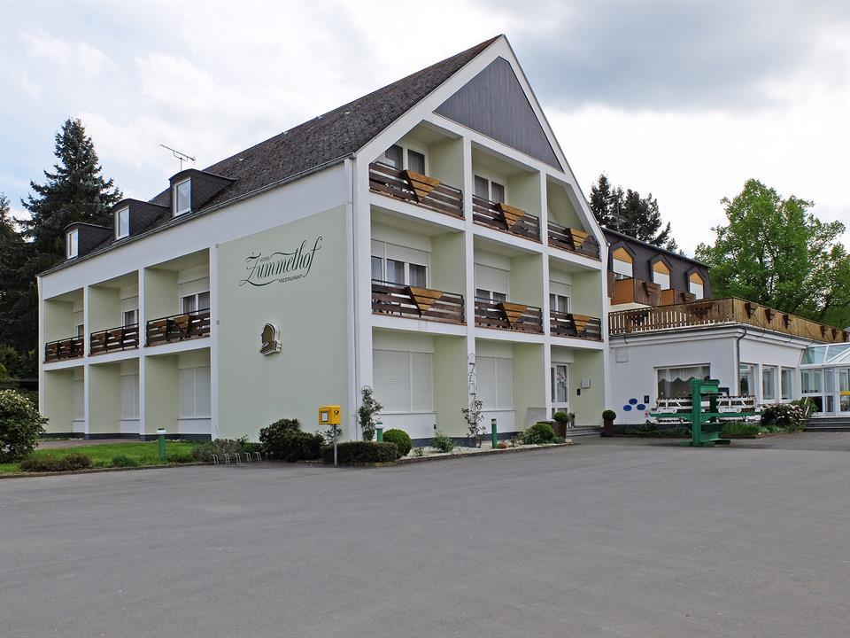 Hotel / Motel for Sale at Nice hotel in Leiwen - Other Rheinland Pfalz, Rheinland Pfalz, 54340 Germany