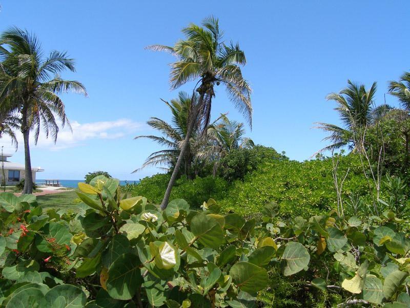 Autre pour l Vente à Atlantic View, Hope Town, Abaco, Bahamas Autres Abaco, Abaco Bahamas