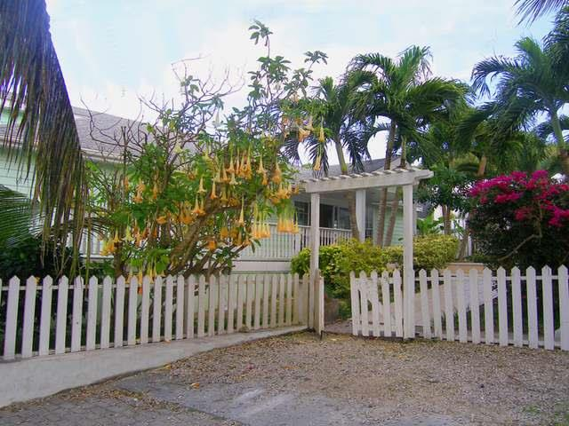 Additional photo for property listing at Lion's Den, Hope Town, Abaco, Bahamas Other Abaco, 阿巴科 巴哈马