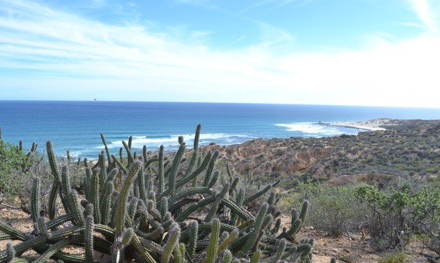 Terre / Lot de terrain pour l Vente à Nine Palms Beach Road, East Cape San Jose Del Cabo, Baja California Sur,23400 Mexique