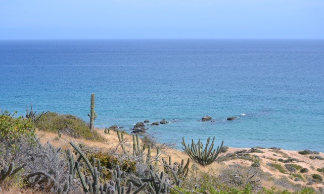 Additional photo for property listing at Nine Palms Beach Road, East Cape  San Jose Del Cabo, Baja California Sur,23400 Mexique