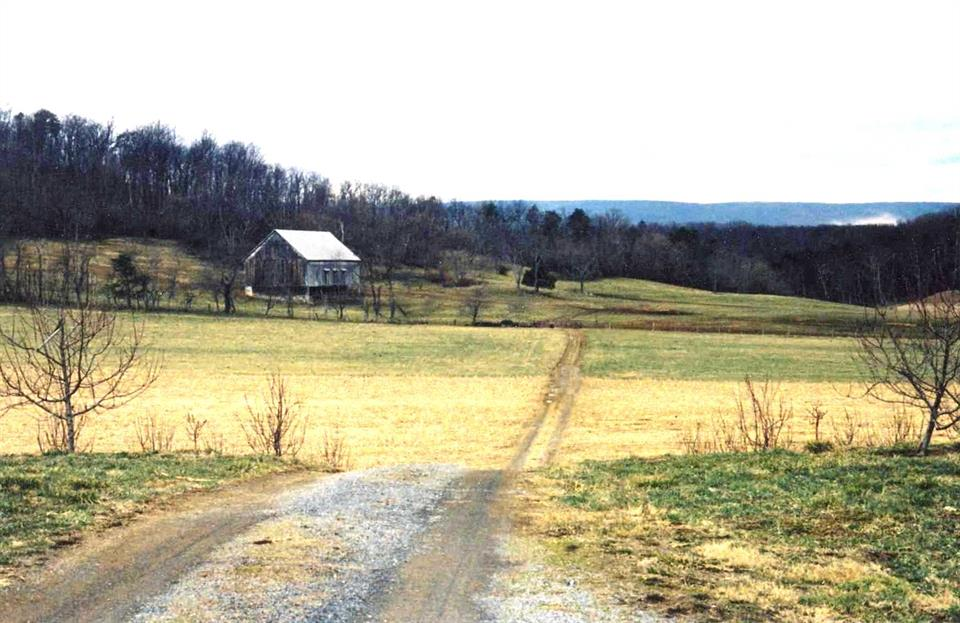 Additional photo for property listing at Cedar Creek Grade, Winchester, Va 22602  Winchester, Virginia 22602 United States