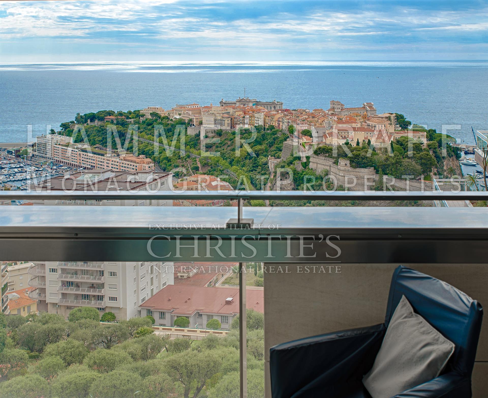 Wohnung Für Verkauf Beim MONTE CARLO VIEW Very Airy Apartment 98000 Monaco
